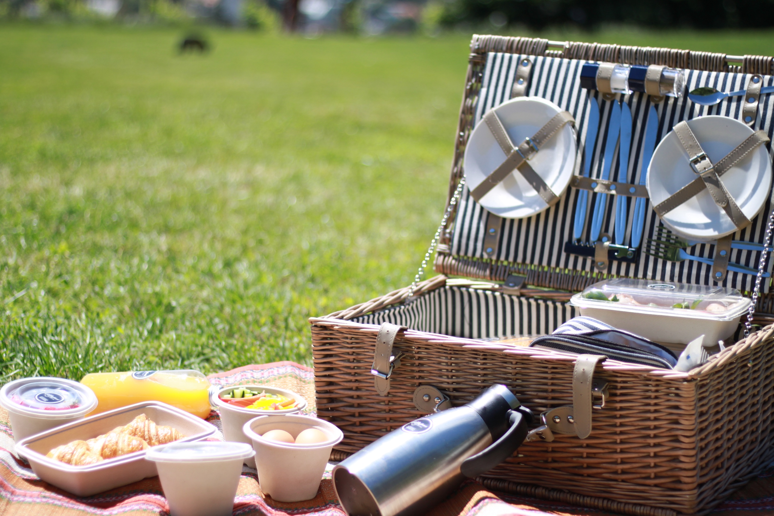 Breakfast in the park Goodmorning Vienna (14)